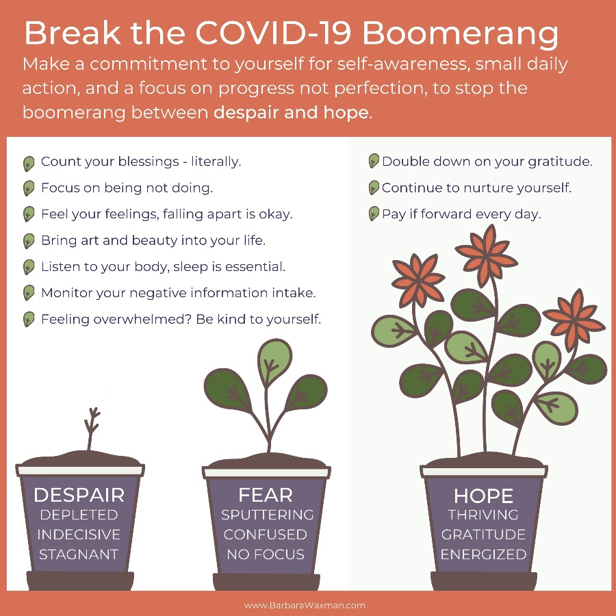 How to Stop the COVID-19 Boomerang Between Despair and Hope Barbara Waxman